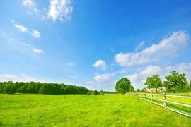 5 věcí, na které si dát pozor při koupi pozemku